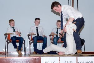 Andrew White demonstrating how to shear a sheep