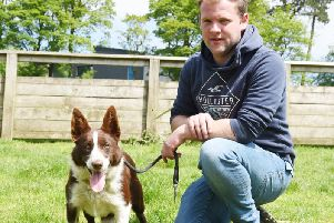Dewi Jenkins with his 8,500gns top price Skipton dog, Graylees Rose