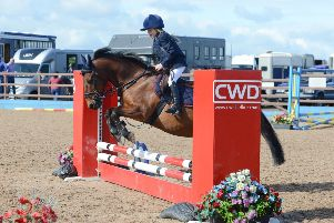 Serena Brown riding Rathdrum Boy, clear in the 128 50cm