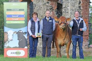 Neil Acheson discusses sponsorship of the 2019 Limousin Commercial Herd Competition with committee members Joan Gilliland and Connor Mulholland. (Photo by Julie Hazelton)