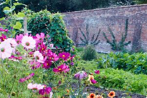 Guy's Cliffe Walled Garden. Photo provided by the team at Guy's Cliffe Walled Garden.