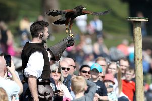 """The Falconer's Quest at Warwick Castle. Photo by Adam Fradgley'Pictures from the first public performance of """"The Falconers Quest""""."""