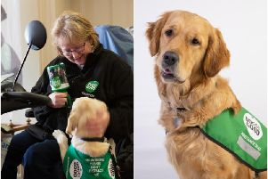 Left: Sarah Carr with a puppy in training and right shows Sarah's two-year-old golden retriever assistance dog Rumba. Photos supplied