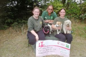 Appledown Rescue and Rehoming Kennels