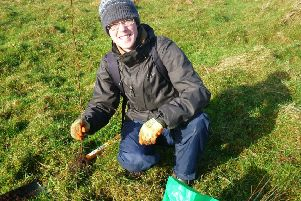 Lisburn volunteers sought for tree planting project
