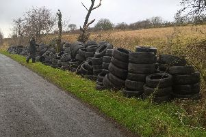 The mountain of tyres dumped over the gate at Slievenacloy Nature Reserve, piled up by Ulster Wildlife staff on the roadside for collection.