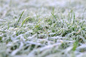 Frost. Pic Steve Robards SR1732092 SUS-171213-121847001