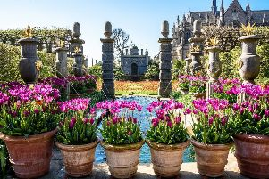 Spring flowers bloom in the gardens in the warm spring weather at Arundel Castle. Photo: Julia Claxton