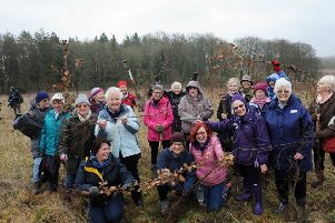 ks190131-1 WI Slindn Planting  phot  kate Members of the West Sussex Federation of WI taking part in the planting of 100 Oak trees at Northwood National Trust Estate Slindon to celebrate the centenary.ks190131-1 SUS-190317-111526008