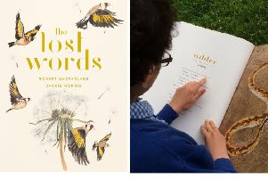 Lincs Wildlife Trust aims to get a copy of the book The Lost Words in every primary and special school across the county. Images supplied.