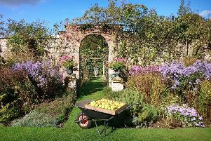 For more information on Apple Day at Gunby call 01754 890102 or visit www.nationaltrust.org.uk/gunby-hall