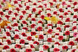 A Field of Remembrance has been erected on Donegall Square (Photo: Shutterstock)