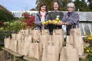 The annual Apple Day at Gunby Hall, with (from left) Jamielah Lockwood - volunteer, Natasha Johnson - head gardener, and Jinny Wilson - voluteer, selling apples from Gunby gardens.