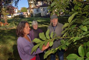 Horticulture specialist Christina Moulton shows Jill and Phil Morris around the garden at Tresillian House PHOTO: Tim Williams