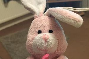 Pink rabbit 'Baby' is missing PHOTO: Supplied