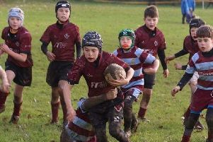 Melton RFC U10s lost just once at the county cup preliminary tournament EMN-190511-165027002