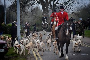 Whipper-In Robert Jarrett leads the hounds away as Cottesmore Hunt prepare for a trail hunt in the Melton area on New Year's Day EMN-200201-111306001
