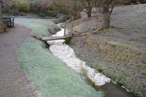 Residents report fish dying in the stream