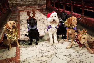 Assistance dogs are lining up to take part in the Canine Partners carol service