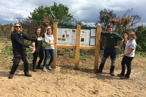 Binz Chapman (Hampshire County Council Countryside Service Ranger), Christina Bowdler (Hampshire County Council Countryside Service Ranger), Emma Stanbury (Heathlands Reunited Project Support Officer), Steven Ord (Hampshire County Council Countryside Service Ranger), Rachel Johnson (Heathlands Reunited Apprentice) at Broxhead Common.