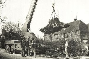 Workmen remove the roots of one of the trees that fell at Haywards Heath Hospital