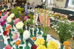 Flowers at Chailey Horticultural autumn show SUS-180919-140824001