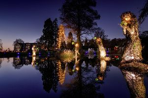 Glow Wild at Wakehurst. Picture by Jim Holden