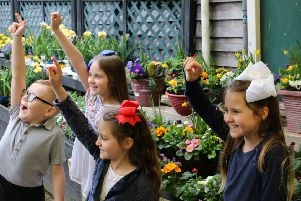 Notcutts will be hosting a free garden trail this half-term