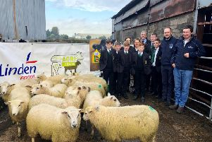 Mr McClean and Holy Trinity College pupils being presented with the Agri Club lambs by staff from Linden Foods