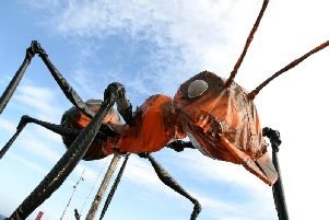 Sarruga and their city-conquering Insectes will parade as part of IF: Milton Keynes International Festival