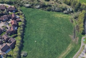 The development site, with the ancient hedgerow running across the top