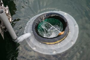 A sea bin can collect floating rubbish.