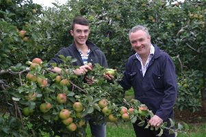 Cider and tourism blossom for family in Armagh's 'orchard county'
