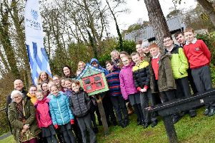 Pupils from Cairncastle PS help Mid and East Antrim Borough Council to design and build a 'Free Little Library' in Carnfunnock Country Park.