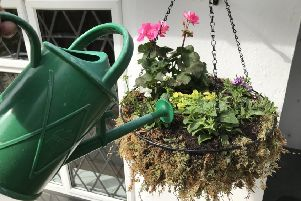 Watering a hanging basket.'Picture credit: Hannah Stephenson/PA.