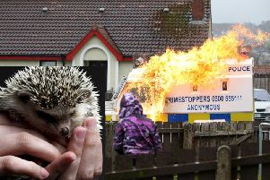 A petrol bomb is hurled at a P.S.N.I. vehicle in Creggan in 2018. Inset: a hedgehog (File Image).