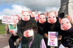 A number of protests have been staged previously by people opposed to the Reahill Road pig farm. (archive image)