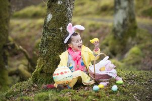 Young Nature Detectives invited to crack the clues of the Monkstown Wood Easter Trail