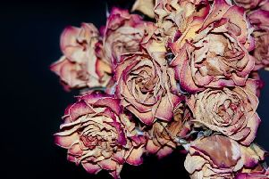 Be sure to dispose of any flowers that are past their best correctly