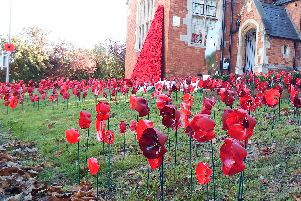 The community of Duston has been working hard since the start of summer to craft more than 5,000 poppies. Pictures supplied by David Winter.