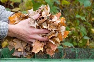A garden waste charge is to be introduced by Northampton Borough Council