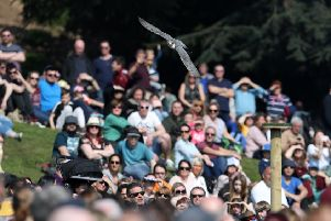 "THE FALCONERS QUEST - WARWICK CASTLE - WARWICKSHIRE 'Picture by Adam Fradgley'Pictures from the first public performance of ""The Falconers Quest"" at Warwick Castle in Warwickshire - Peregrine Falcon'FOR FURTHER DETAILS CONTACT:'E. lucy.rawlings@merlinentertainments.biz'T. 01926 406 661 WeT"