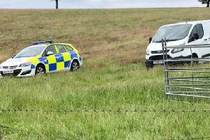 Police at the scene of one of the sheep butchery incidents in Northamptonshire.
