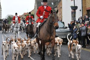 The Fitzwilliam Hunt Boxing Day meet from the Bell at Stilton. Leading the hounds is the whipper in George Adams EMN-141226-140537009