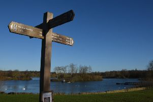 Ferry Meadows country park in the Nene Park, Peterborough. Photo: David Lowndes