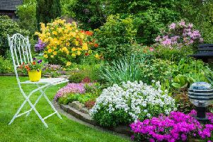There are a few factors which could land you on the wrong side of the law when it comes to your outdoor space