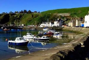 The incident allegedly took place at Stonehaven Harbour (Photo: Shutterstock)