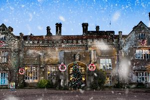 Marwell Zoo winter wonderland. Picture: Marwell Zoo