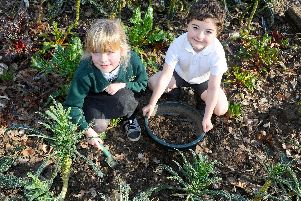 Children at Wicor Primary School, have been involved in a whole host of eco projects including cultivating their own fruit and veg and producing their own environmentally friendly soap.''Pictured is: Phoebe Ward (7) and George Martin (7) in the allotment. ''Picture: Sarah Standing (150219-9289)