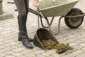 Simon's daughter has been shovelling horse manure for 10 an hour - and he's very proud of her